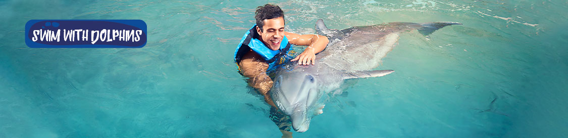 Happy family touching a dolphin on Isla Mujeres