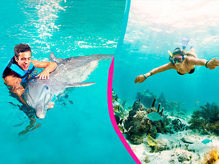 Royal Garrafon + Dolphin Encounter Package in Garrafon Park, Cancun, Isla Mujeres